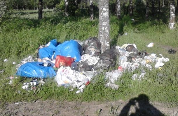 Общественники очистили парк от мусора, но чиновники его не вывозят