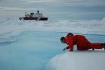 Северный Ледовитый океан: Фоторепортаж