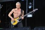 """Фоторепортаж: «Red Hot Chili Peppers заступились за """"диких кисок"""" в Петербурге»"""