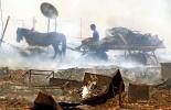 Фоторепортаж: «пожары в Черногории»