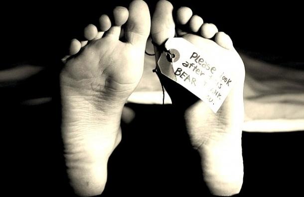 Престарелых экс-супругов нашли мертвыми в Купчино