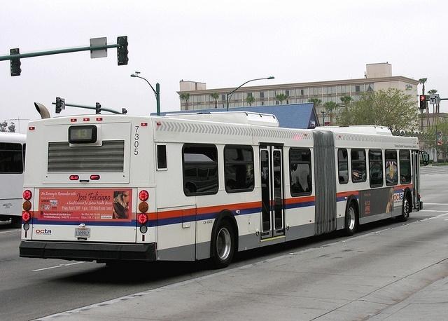 Автобус-гармошка: Фото