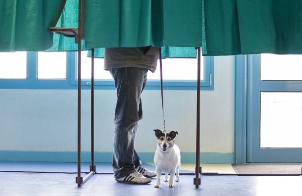 ЦИК хочет изменить закон о выборах из-за «агрессивных избирателей»