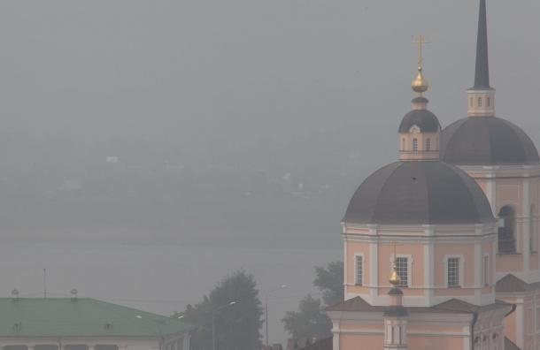 Лесные пожары в Томской области усилились, людям нечем дышать из-за смога (фото, видео)