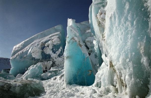 СМИ: ледник Петермана почти растаял, всему живому скоро придет конец
