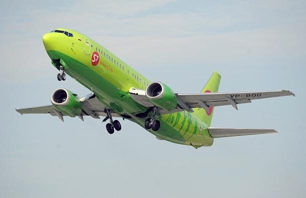 Бакланы смяли носовую часть самолета авиакомпании S7