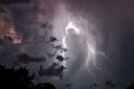 Отца и сына убило молнией во время грозы в Подмосковье