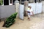 Более 200 детей из Петербурга находится в Краснодарском крае, пострадавшем от наводнения