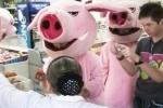 «Хрюши» готовят новую атаку на петербургские магазины