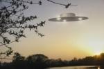 В Ленобласти обнаружили странные круги на полях, оставленные НЛО