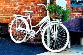 В Петербурге появятся бесплатные общественные велосипеды