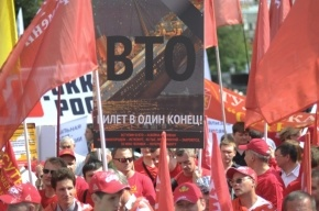 В Петербурге пенсионерку задержали на митинге против вступления России в ВТО