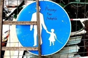 Пожилой петербуржец изнасиловал дошкольницу на дачном участке