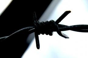 В Петродворце осужденный за кражу умер в СИЗО