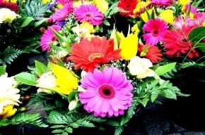 В Петербурге командир роты заставлял призывников работать до посинения в цветочном магазине
