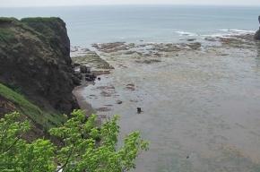 В Охотском море в районе Сахалина пропал ученый