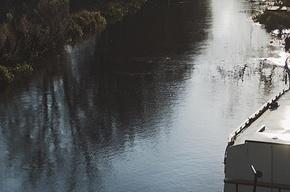 В Пушкине утонул мужчина