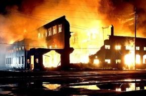 Крупный пожар в Москве локализован (видео)