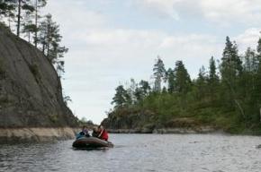 Финны заблудились и провели ночь в лесу Ленобласти