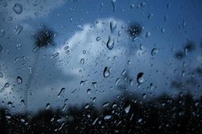 Погода в Петербурге и области 11 июля: похолодание, дожди и грозы