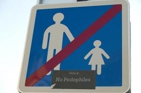 Под Петербургом педофил надругался над тремя девочками на крыше дома
