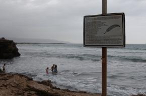 В Финском заливе перевернулась резиновая лодка: все погибли