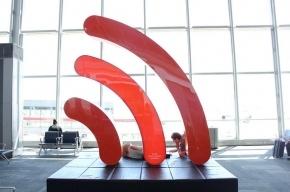 В Купчино откроют «зеленый офис» c wi-fi газоном