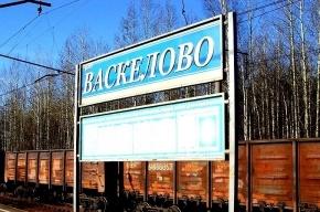 Петербурженка, упавшая на рельсы, отсудила у РЖД 250 тысяч