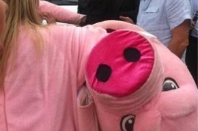 Хрюши против Народный: Полтавченко отказался идти в универсам в костюме с пятачком