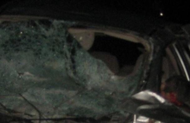 В ДТП под Вологдой погибли 6 человек (кадры с места)