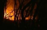 Пожары в Испании: Фоторепортаж