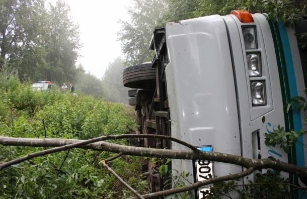 Автобус с петербуржцами перевернулся под Псковом из-за уснувшего водителя (фото, список раненых)