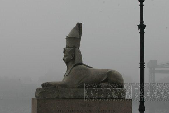 Туман: Фото