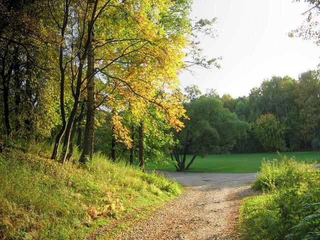 800px-Udelny_Park_Downhill.jpg