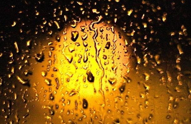 В Петербурге будет теплее, чем обычно, но возможен дождь