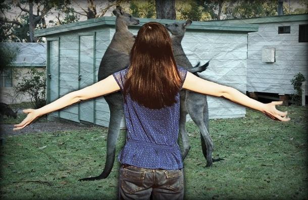 Сколько правшей среди кенгуру - узнали аспиранты СПбГУ
