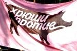 В Петербурге закрыто дело «хрюши», укусившего полицейского сломанной челюстью