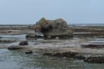 В Охотском море произошло мощное землетрясение