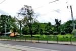 В Петербурге вырубили Деминский сад, а на его месте строят бизнес-центр