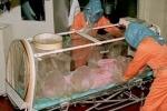 У 12 жителей Алтайского края подозревают сибирскую язву