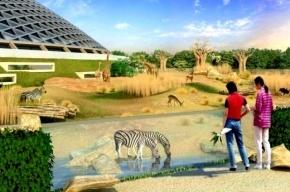 В Юнтолово вместо зоопарка будет просто парк
