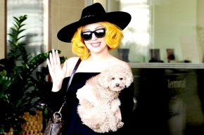 Милонов не пустит несовершеннолетних на концерт Lady Gaga