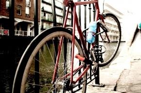 Петербуржец в одиночку разобрался с толпой гопников, защищая свой велосипед