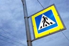 В Петербурге появится почти 2 тысячи флуоресцентных дорожных знаков