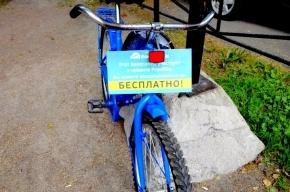 В Петербурге появились бесплатные общественные велосипеды