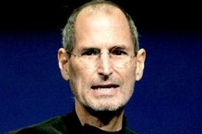 Вязаный Стив и мохнатое яблоко: петербуржцы выберут лучший проект памятника Стиву Джобсу