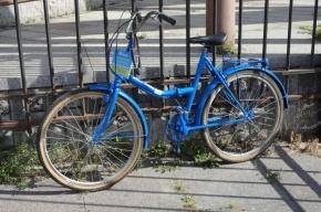 Петербургские велосипедисты поссорились из-за проекта Free Bike