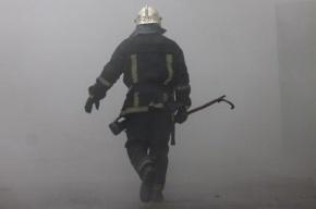 Пожар в роддоме Петербурга: женщин с детьми эвакуировали прямо в халатах