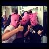 Фоторепортаж: «Piggy Riot»