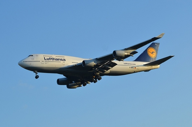 Lufthansa: Фото